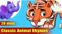 Animal Rhymes