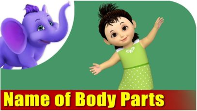 Name of Body Parts, Learn Body Parts – My Body Song