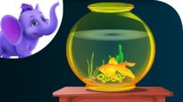 A Little Golden Fish – Nursery Rhyme with Karaoke
