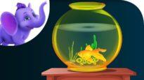 A Little Golden Fish – Nursery Rhyme with Karaoke