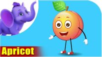 Apricot – Fruit Rhyme