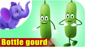 Bottle gourd – Vegetable Rhyme