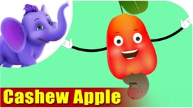 Cashew Apple – Fruit Rhyme