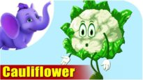 Cauliflower – Vegetable Rhyme