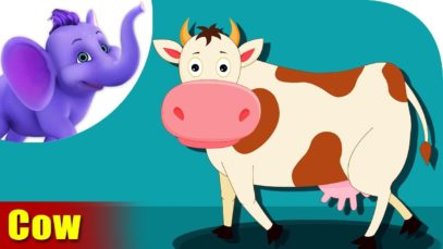 Cow Animal Rhyme, Cow Videos for Children