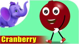 Cranberry – Fruit Rhyme