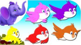 Five Colorful Birds – Nursery Rhyme with Karaoke