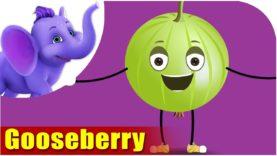 Gooseberry – Fruit Rhyme