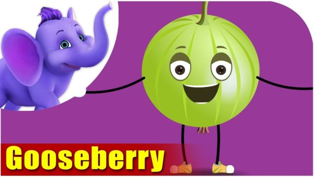 Gooseberry – Fruit Rhyme