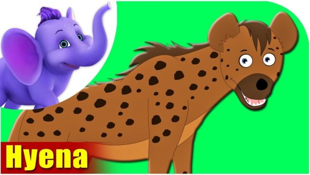 Hyena – Animal Rhymes in Ultra HD (4K)