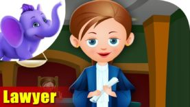 Lawyer – Rhymes on Profession