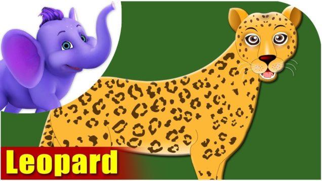 Leopard – Animal Rhymes in Ultra HD (4K)