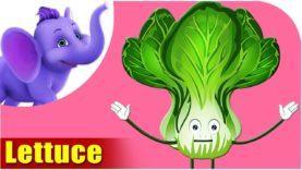 Lettuce – Vegetable Rhyme