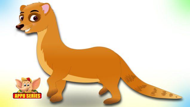 Mongoose – Animal Rhymes in Ultra HD (4K)