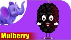 Mulberry – Fruit Rhyme