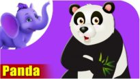 Panda – Animal Rhymes in Ultra HD (4K)