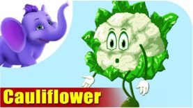 Phool Kobee (Cauliflower) – Vegetable Rhymes in Marathi
