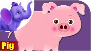 Pig – Animal Rhymes in Ultra HD (4K)