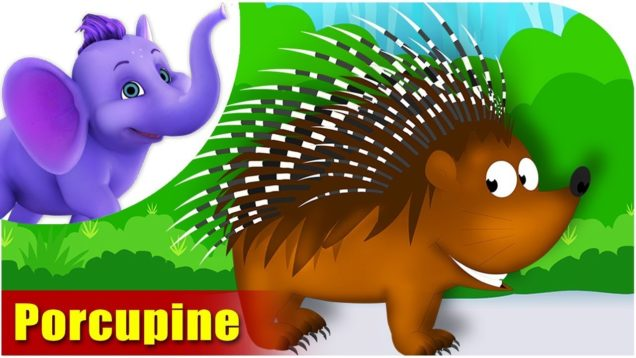 Porcupine Rhymes