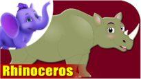 Rhinoceros – Animal Rhymes in Ultra HD (4K)
