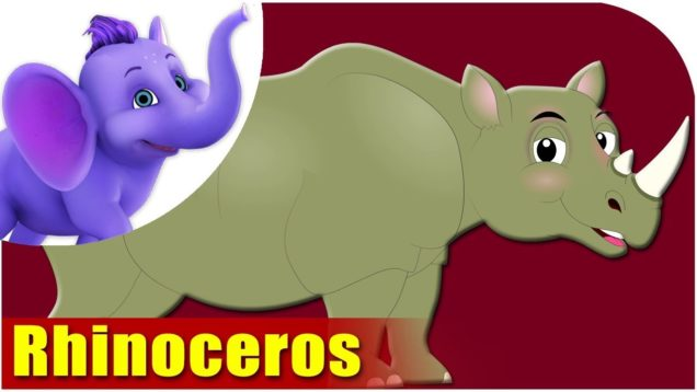 Rhinoceros – Animal Rhymes in Ultra HD (4K)
