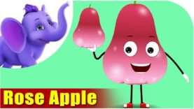 Rose Apple – Fruit Rhyme