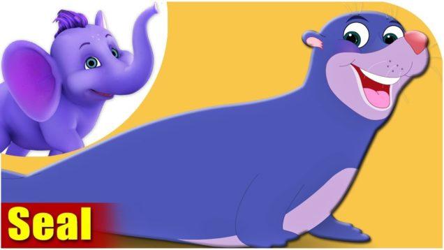 Seal – Animal Rhymes in Ultra HD (4K)