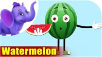 Watermelon – Fruit Rhyme