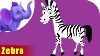 Zebra Animal Rhymes | Hindi Rhymes from Appuseries
