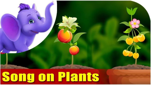 Song on Plants – Five Main Parts of a Plant in Ultra HD (4K)