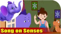 Song on Senses – Five Senses in Ultra HD (4K)