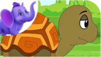 The Tortoise – Nursery Rhyme