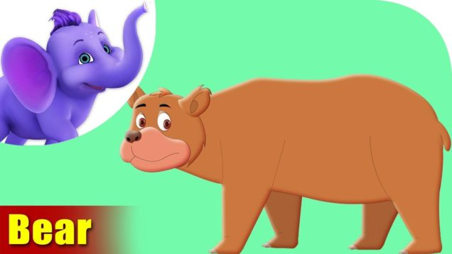Aswal (Bear) Animal Rhyme | Marathi Rhymes from Appuseries