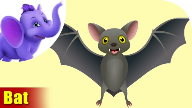 Chamgaadad (Bat) Animal Rhymes | Hindi Rhymes from Appuseries