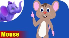 Chuha (Mouse) – Animal Rhymes in Hindi
