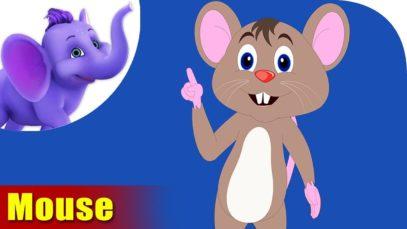 Chuha (Mouse) – Animal Rhymes in Hindi