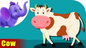 Gaay (Cow) – Animal Rhymes in Marathi
