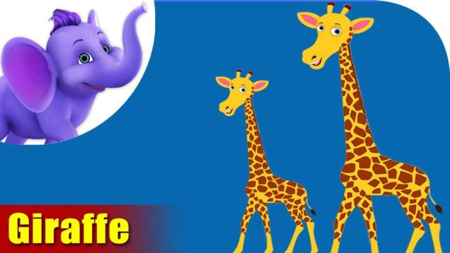 Giraffe Animal Rhymes | Hindi Rhymes from Appuseries