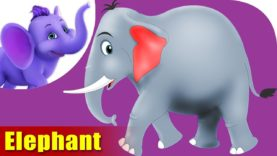 Hatti (Elephant) – Animal Rhymes in Marathi