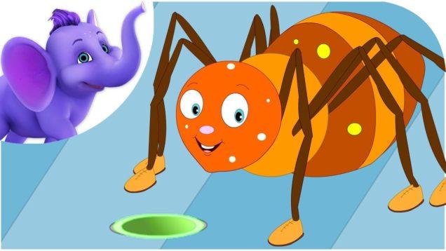 Incy Wincy Spider in Telugu