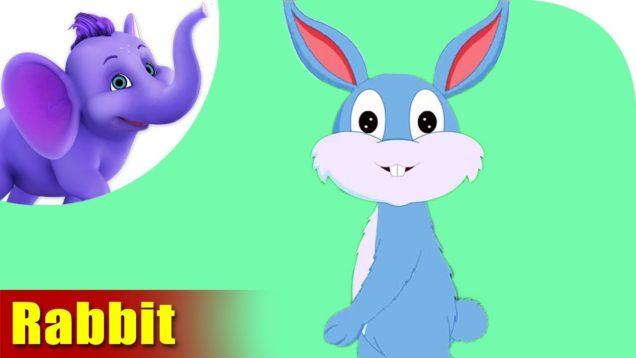 Kharagosh (Rabbit) – Animal Rhymes in Hindi