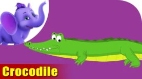 Magar (Crocodile) Animal Rhyme | Marathi Rhymes from Appuseries
