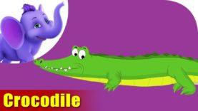 Magar (Crocodile) Animal Rhyme | Marathi Rhymes from Appuseries