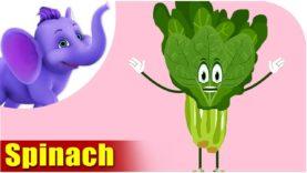 Palak (Spinach) – Vegetable Rhymes in Hindi