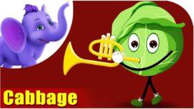 Patta Gobi (Cabbage) – Vegetable Rhymes in Hindi