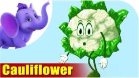 Phool Gobi (Cauliflower) – Vegetable Rhymes in Hindi