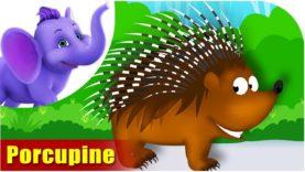 Saahee (Porcupine) Animal Rhymes | Hindi Rhymes from Appuseries
