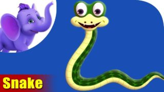 Saap (Snake) Animal Rhyme | Marathi Rhymes from Appuseries