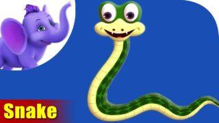Saap (Snake) Animal Rhyme | Marathi Rhymes from Appuseries