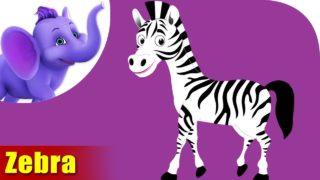 Zebra Animal Rhyme | Marathi Rhymes from Appuseries